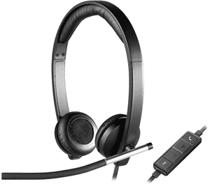Headset / Microphone